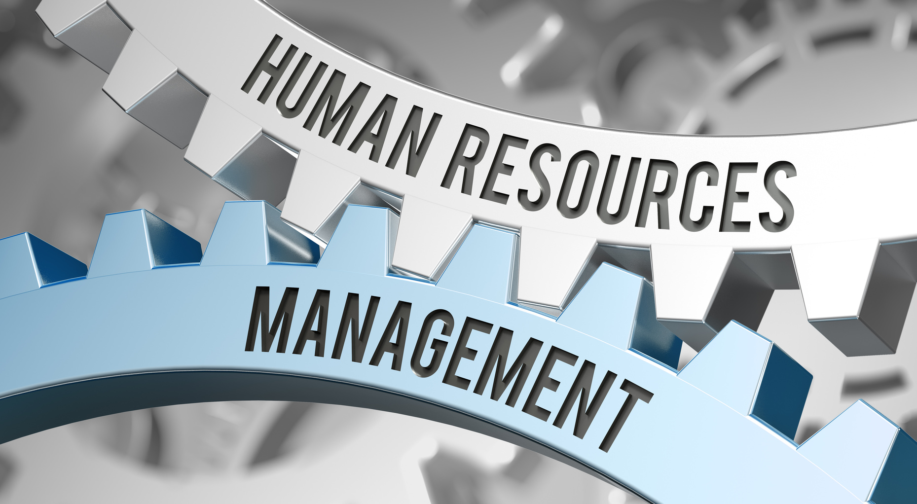 human resources management / Cogwheel